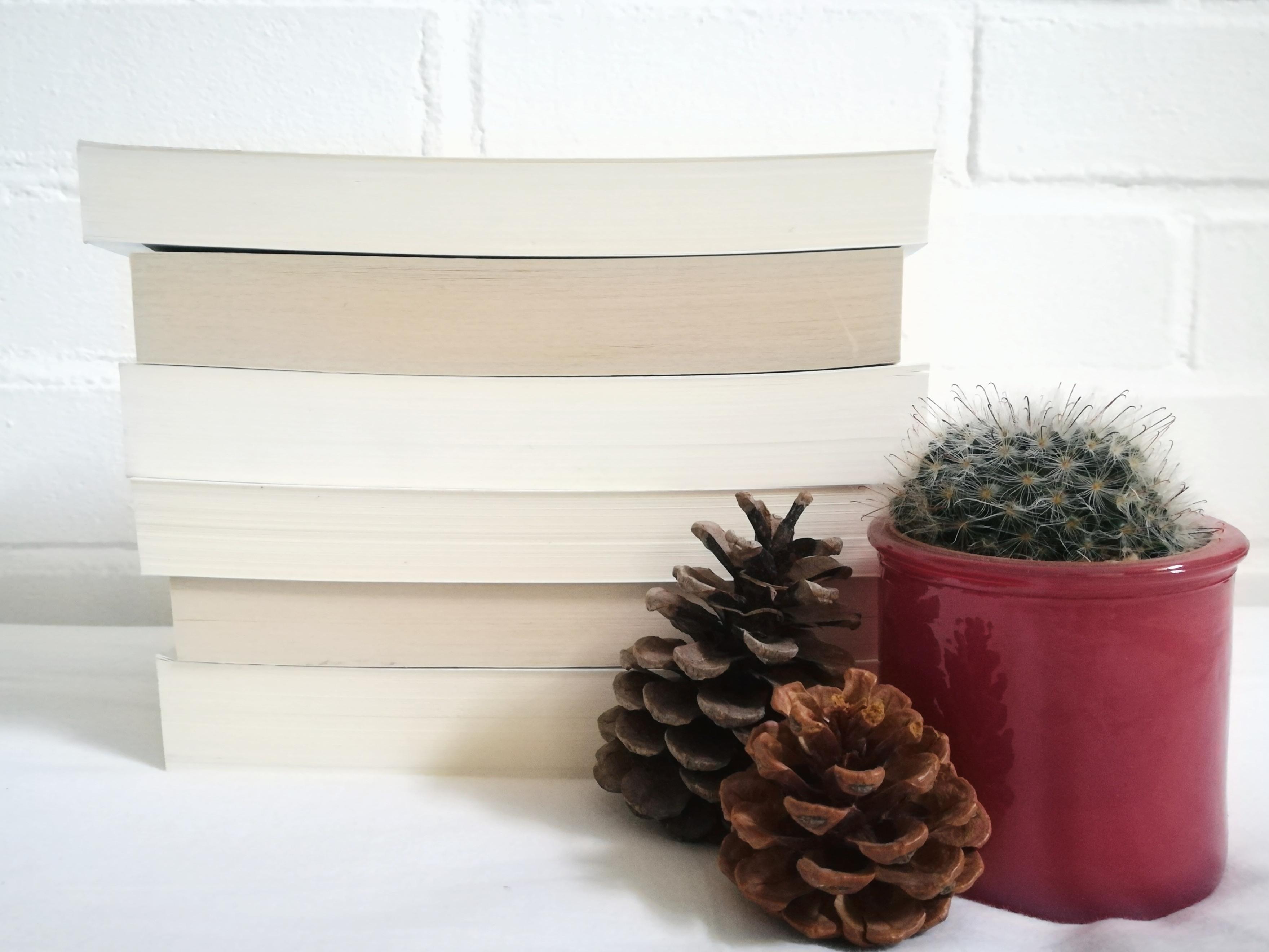 Wrap up en TBR books