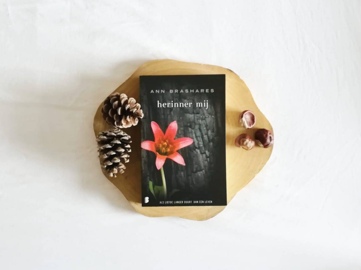 Herinner mij - Ann Brashares | Marieke's Books