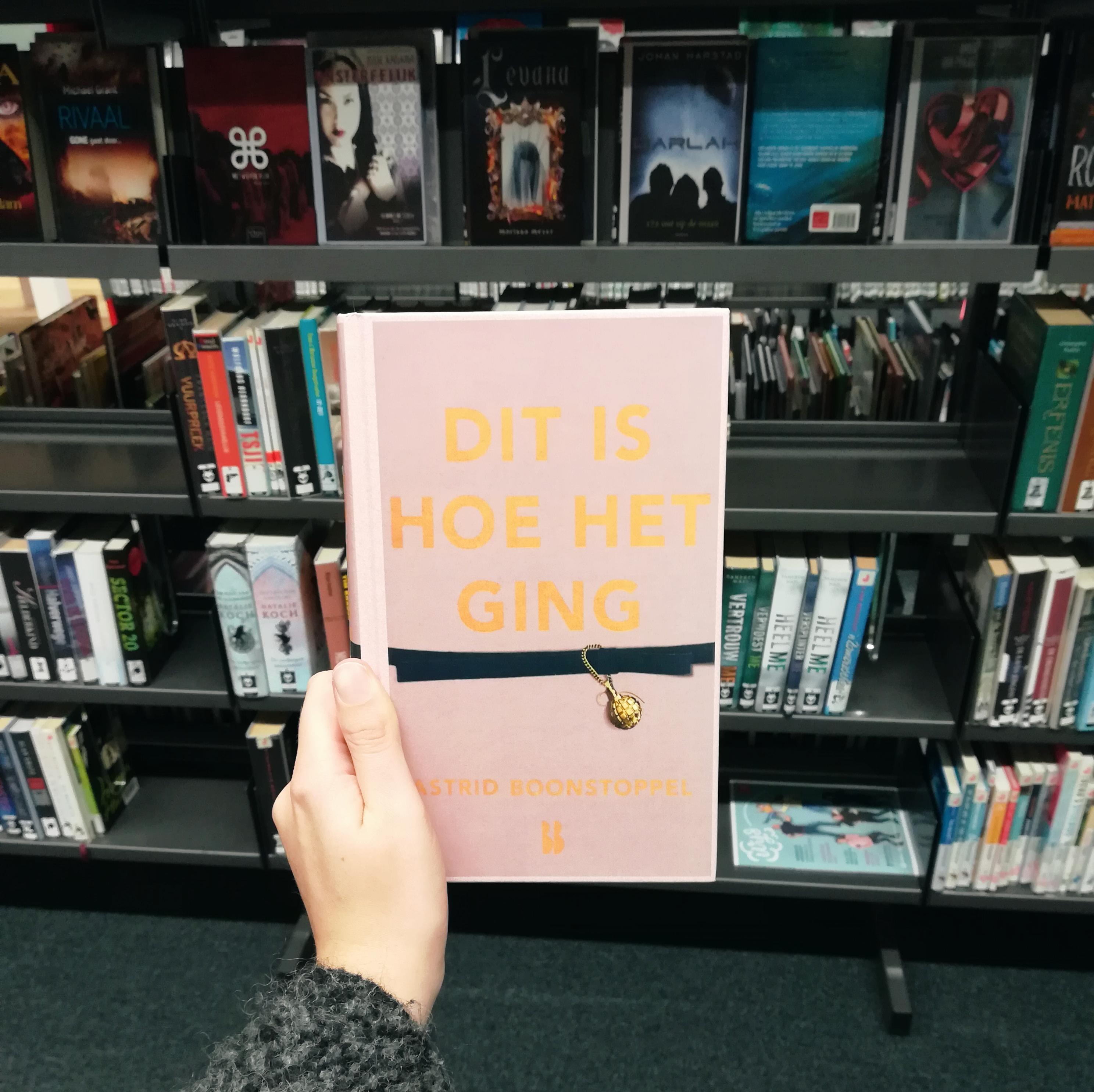 Dit is hoe het ging - Astrid Boonstoppel | Marieke's Books